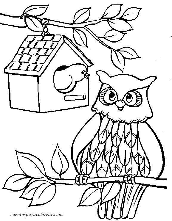 Dibujos para colorear b hos - Dessin hibou facile ...