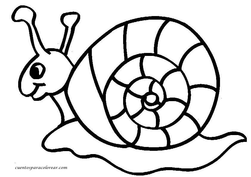 Dibujos para colorear caracoles