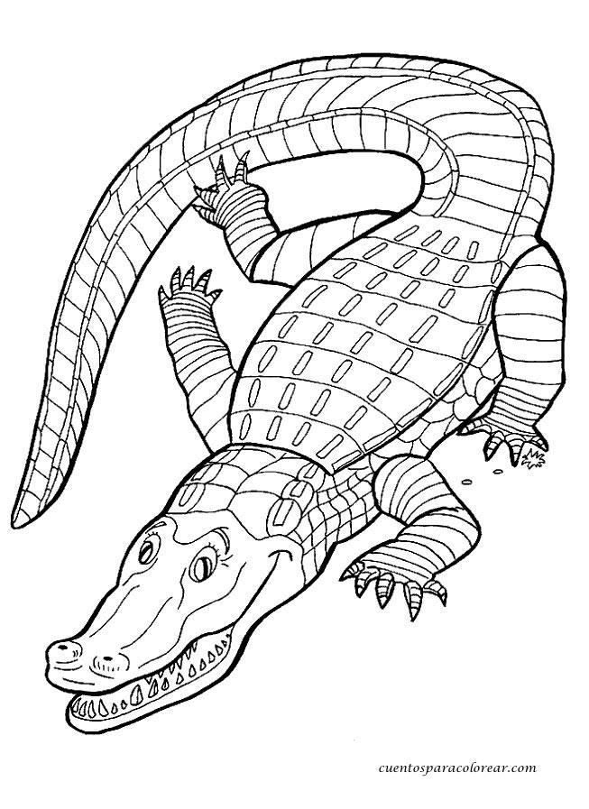 Dibujos para colorear cocodrilos