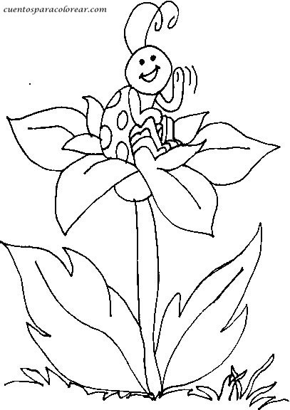 Dibujos para colorear mariquitas