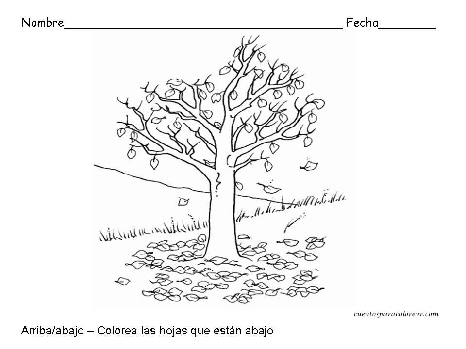 Famoso Hojas Para Colorear Preescolares Patrón - Dibujos Para ...