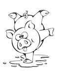 dibujos de cerdos para colorear y pintar