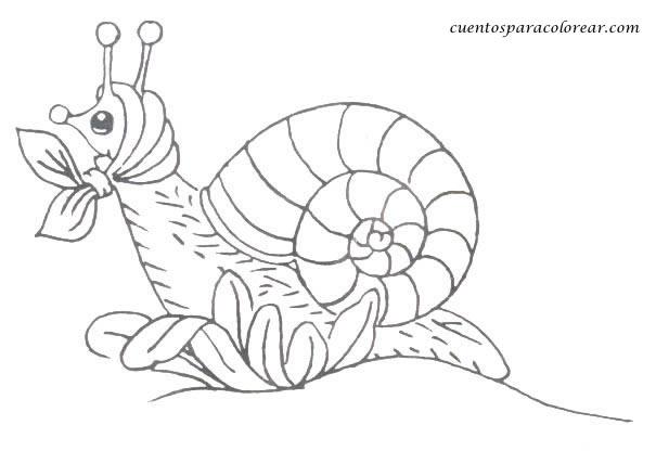 Dibujos Infantiles De Caracoles Para Colorear: Dibujos Para Colorear Caracoles