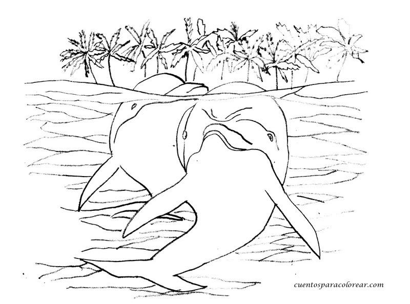 Dibujo Delfin Para Colorear E Imprimir: Dibujos Para Colorear Delfines