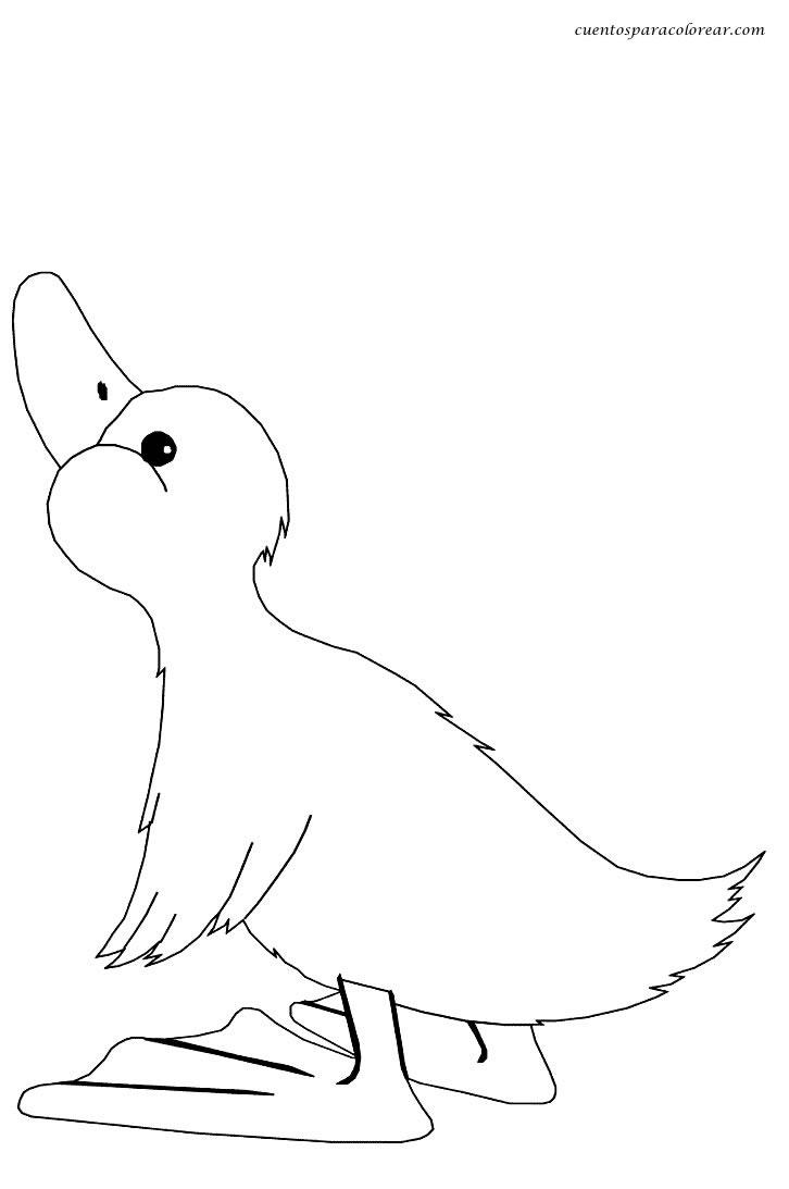 Dibujos para colorear patos