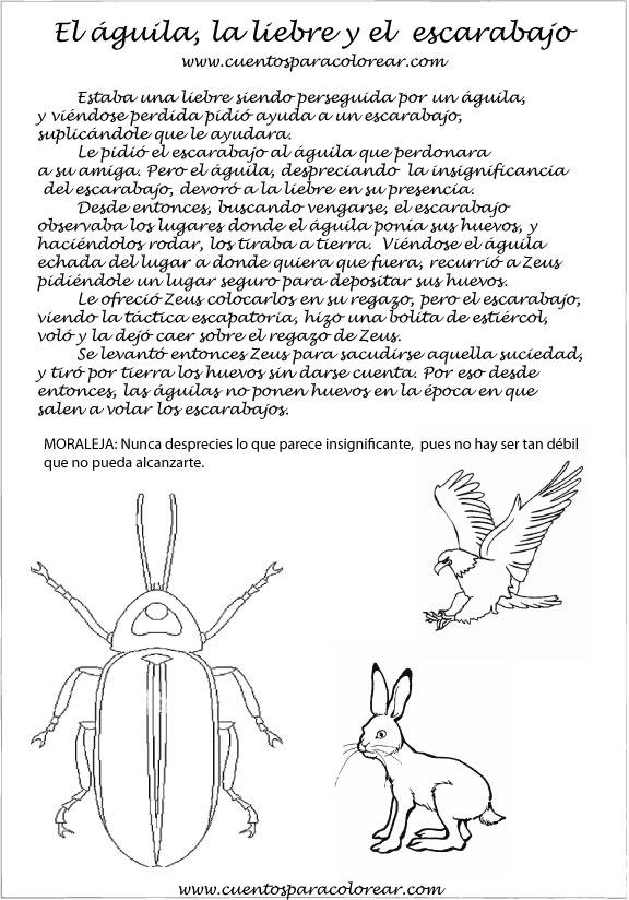 Fábulas Ilustradas El águila la liebre y el escarabajo