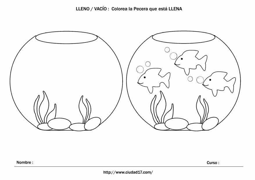 Fichas Educativas De Conceptos Lleno Y Vacío